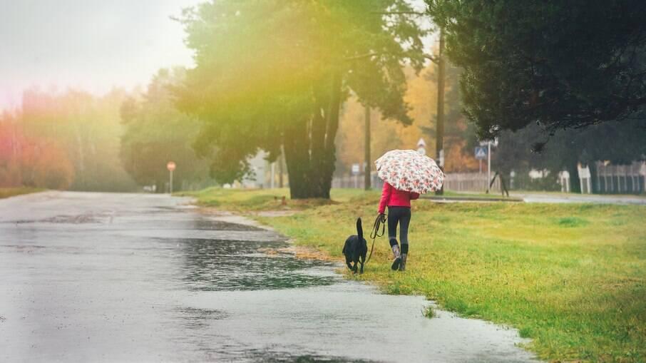 Ver um cachorro caminhando pela rua pode desencadear uma crise em um paciente com cinofobia