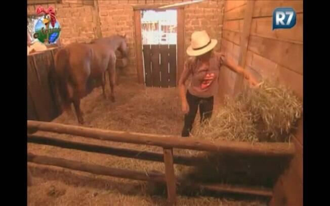 Anna Markun cuida de uma das três baias dos cavalos