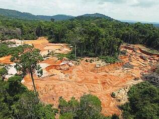 Floresta Amazônica. Jornal aponta que somente em agosto e setembro deste ano a área cortada da mata é de 1.626 quilômetros quadrados