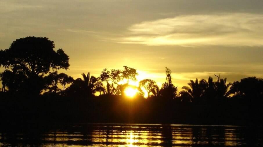 Nascer do sol na floresta amazônica