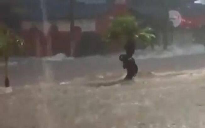 Homem se agarra à árvore para não ser levado por enxurrada