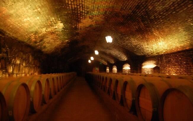 Existem muitas vinícolas perto do centro e o turista pode conhecer o processo de produção da bebida ao procurar o que fazer em Santiago