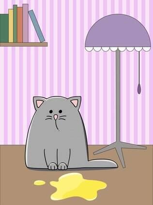 O xixi de gato feito fora da caixinha higiênica é uma dor de cabeça para o dono do bichano