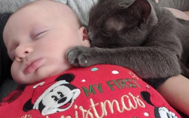 Bebê dormindo com gato cinza dormindo apoiado em seu rosto