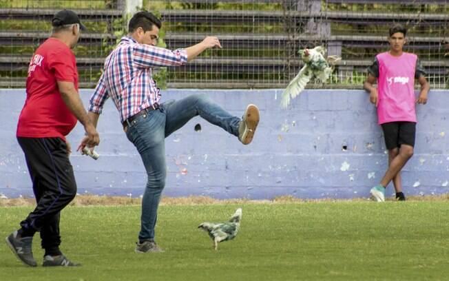Gaston Alegari, diretor do clube uruguaio Fénix, chuta galinha