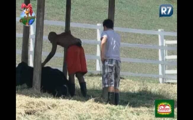 Dinei e Thiago sentem dificuldades de tirar a vaca do pasto