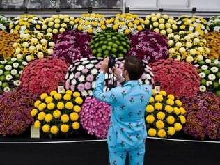TOPSHOTS A visitor dressed in a flower themed suit looks at flowers on display in the Great Pavilion at the 2015 Chelsea Flower Show in London on May 18, 2015. The Chelsea flower show, held annually in the grounds of the Royal Hospital Chelsea, will run this year from May 19-23. AFP PHOTO / JUSTIN TALLIS