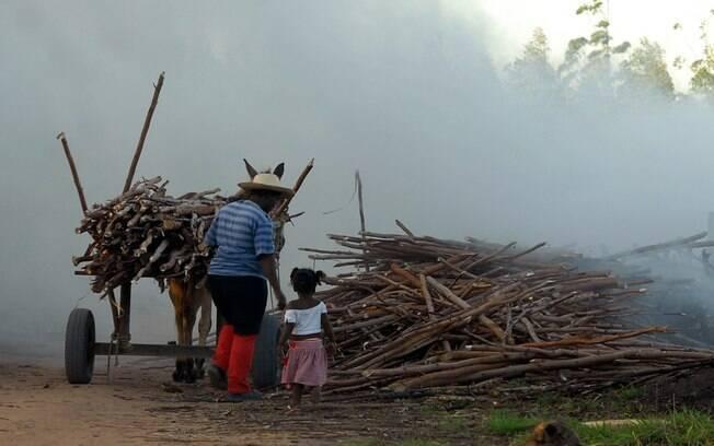 Trabalho infantil pode aumentar durante pandemia