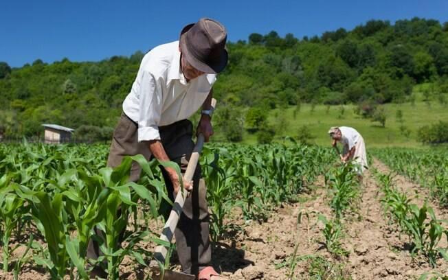Trabalhador rural também foi discutido na Câmara