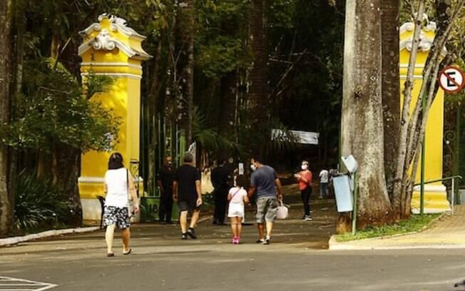 Feira de Orquídeas e Suculentas acontece neste final de semana no Bosque