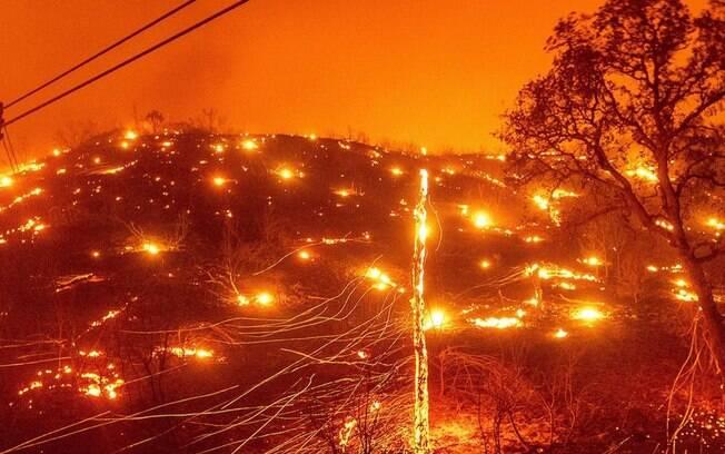 Chamas fizeram o governo da Califórnia declarar estado de emergência