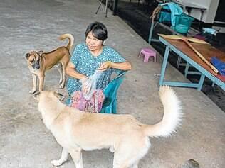 """País tem relação afetiva com animais, e muitos dizem que só matam e comem os cães """"bravos"""""""