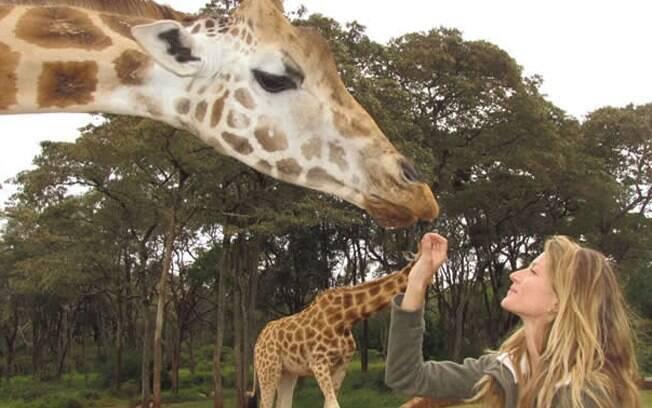 Gisele Bündchen está preocupada com a extinção dos animais