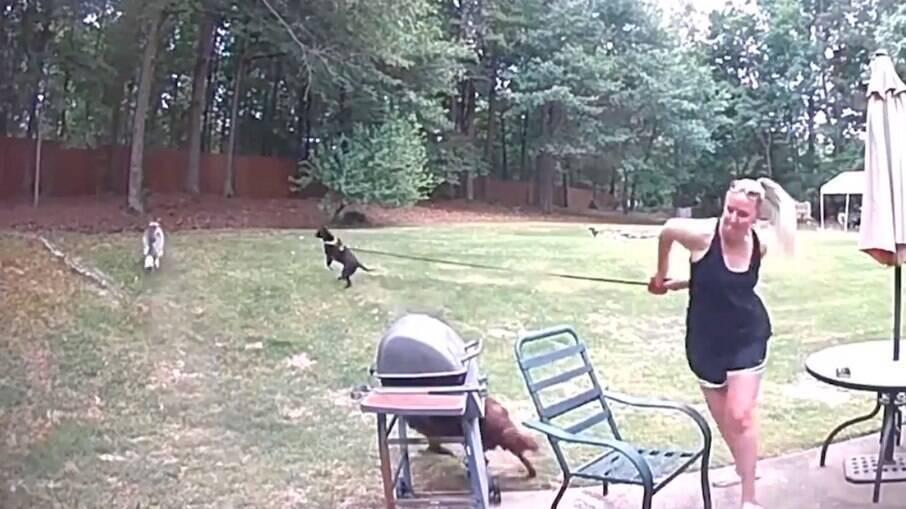 Os cachorros partiram em direção ao esquilo, derrubando a dona com cadeira e tudo