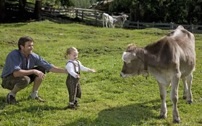 Atividades para crianças e contato com animais são atrações garantidas em hotéis-fazenda