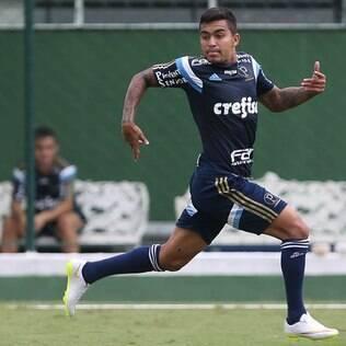 Dudu é o camisa 7 do Palmeiras em 2015