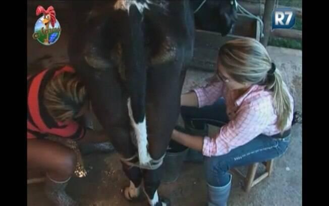 Valesca ajuda Joana a tirar leite da vaca