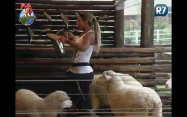 Valesca alimenta as cabras