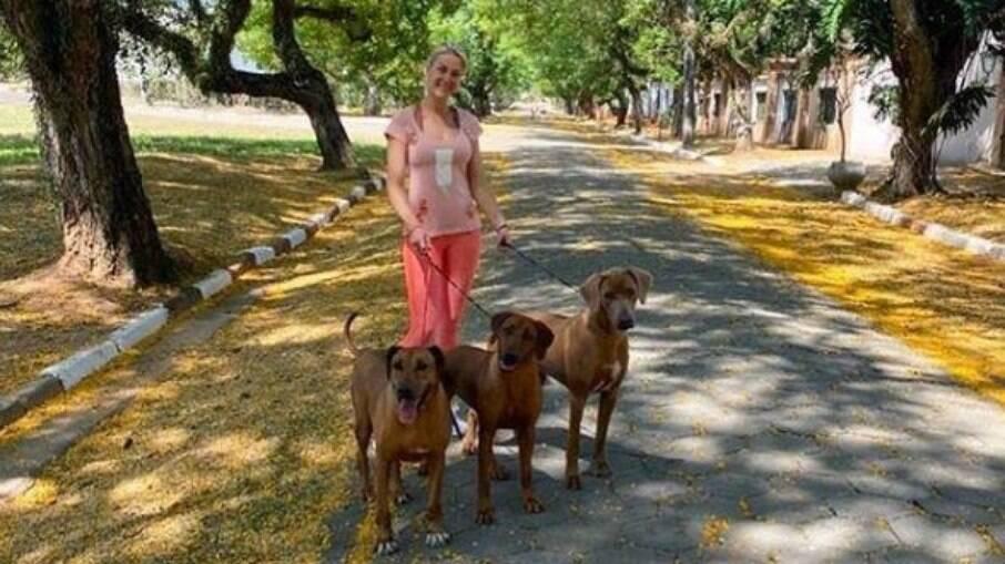 Ana Hickmann passeando com seus cachorros da raça Rhodesian Ridgeback
