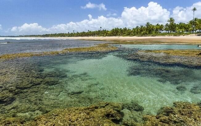 A Península de Maraú é um dos destinos mais procurados entre celebridades