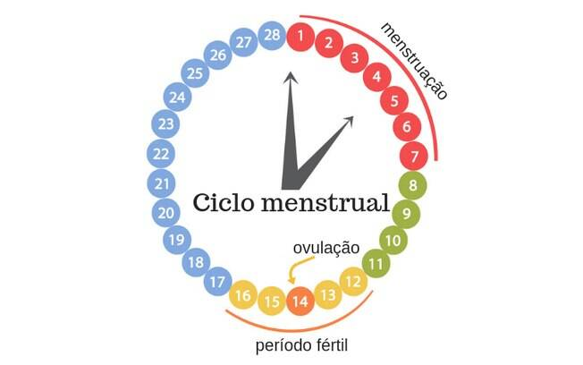 tabela do ciclo menstrual