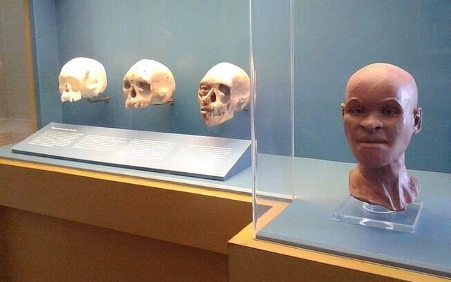 Reconstituição do rosto e o crânio de Luzia: um dos itens que pode ter resistido