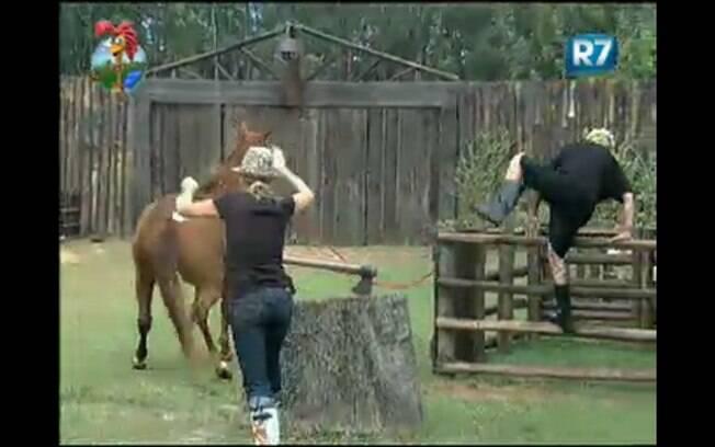 Anna Markun e Gui Pádua correm para acudir égua