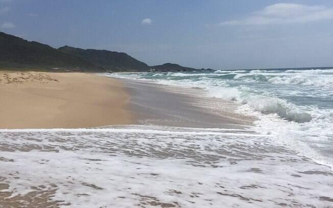 Praia Mole é frequentada por jovens e ideal para ondas entre as praias de Santa Catarina