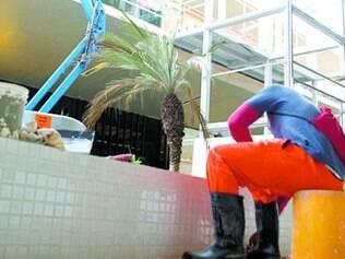 Pintura.Funcionário da obra finaliza pintura no canteiro dos jardins centrais