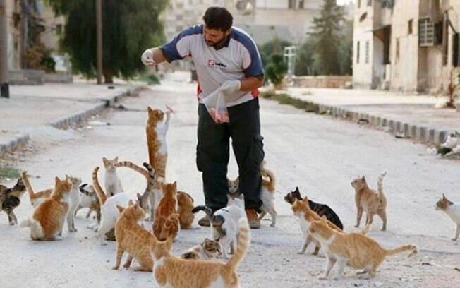 Mohammad e os gatos abandonados