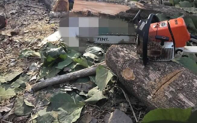 Quando o Samu chegou ao local, o homem atingido por tronco já estava sem sinais vitais