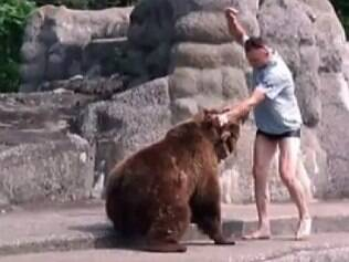 Homem soca urso e foge ileso de jaula