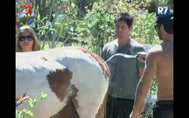 Raquel comenta com Thiago e Marlon que a égua Fani é a mais bonita
