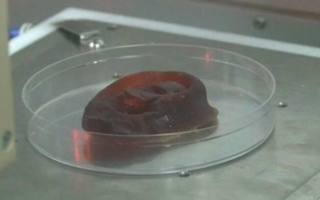 Cientistas afirmam que em três anos será possível usar a cartilagem cultivada em laboratório