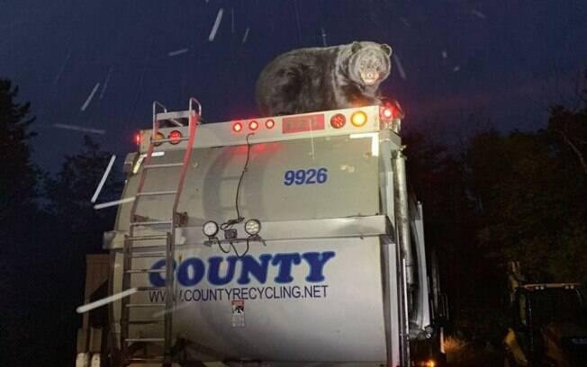 Fotos foram postadas na página do Departamento de Polícia de Kidder Township.