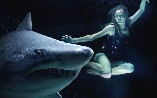 Tubarão e mergulhadora