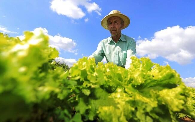 Agricultores familiares têm nova lei