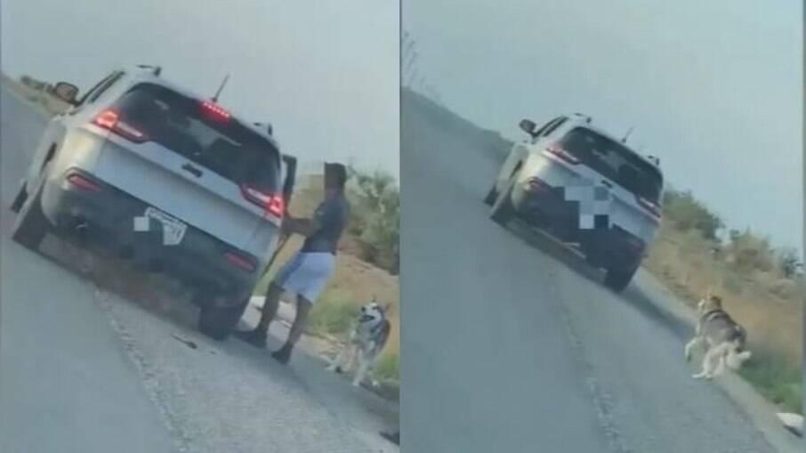 Homem é flagrado abandonando cachorro em estrada deserta, no Texas