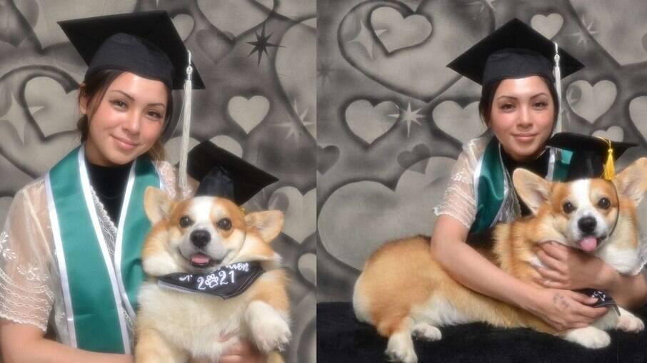 Estudante dedica graduação em universidade ao cachorro de estimação