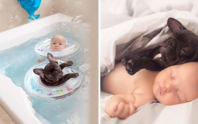 Veja o ensaio de fotos do bebê com o bulldog.