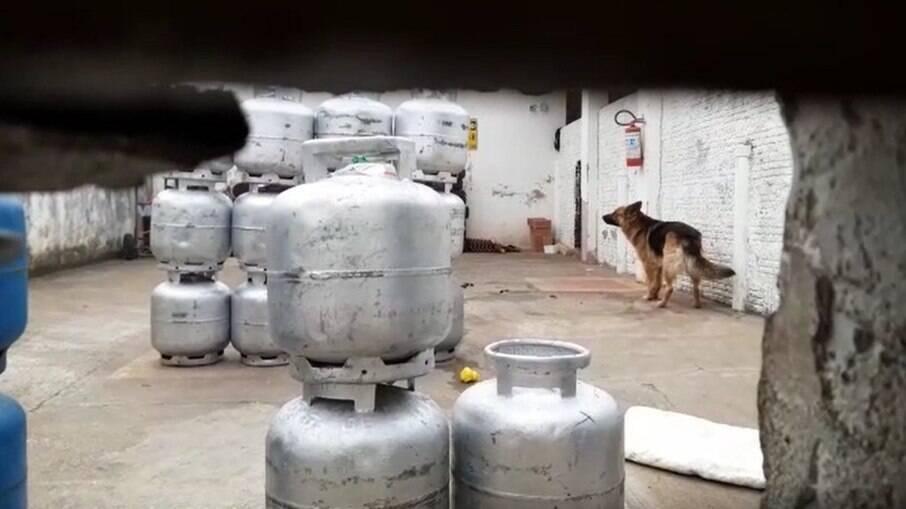 Cães de um depósito de gás de cozinha atacaram e mataram uma criança de 1 ano e 3 meses em Rio Claro