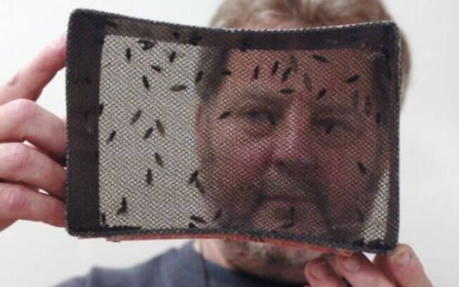 Agência da ONU está investindo na técnica que faz com que o Aedes aegypti não fecunde
