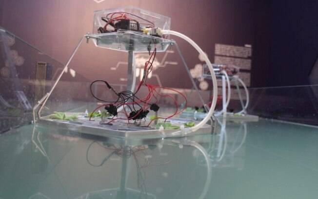 Oi Futuro apresenta 1ª Bienal de Arte Digital com exposições, performances e simpósios sobre linguagens híbridas