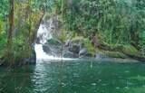 Parque Nacional do Itatiaia conta com cachoeiras, trilhas e outras atrações