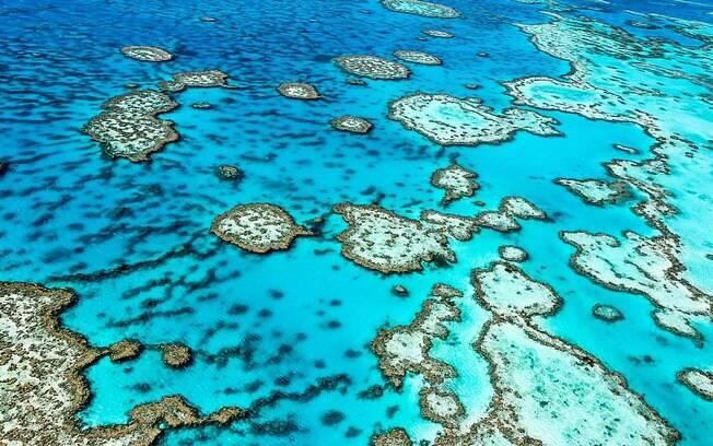 Maior sistema de recifes de coral do mundo