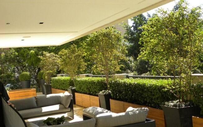 Ao pensar no projeto da varanda, é necessário cuidado na escolha das plantas e da iluminação