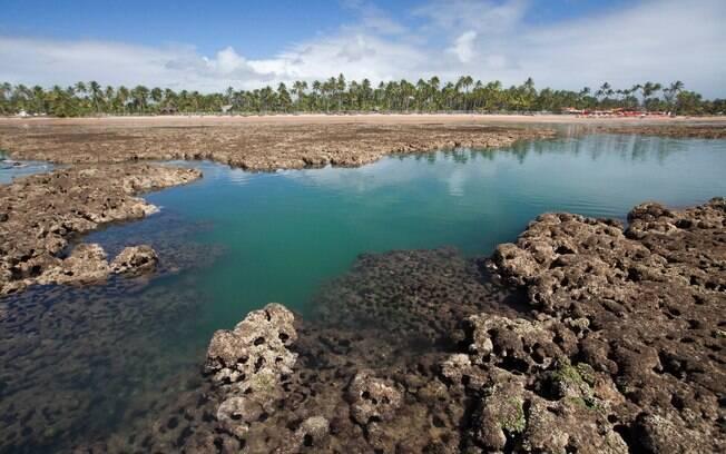 Maraú, na Bahia, está na lista dos destinos que irão bombar em 2020