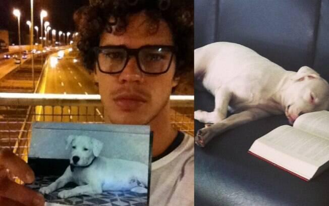 José Loreto faz campanha nas redes sociais para encontrar a cachorra