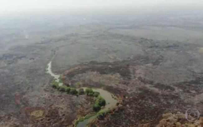 Incêndios do Pantanal já são os piores da História do bioma