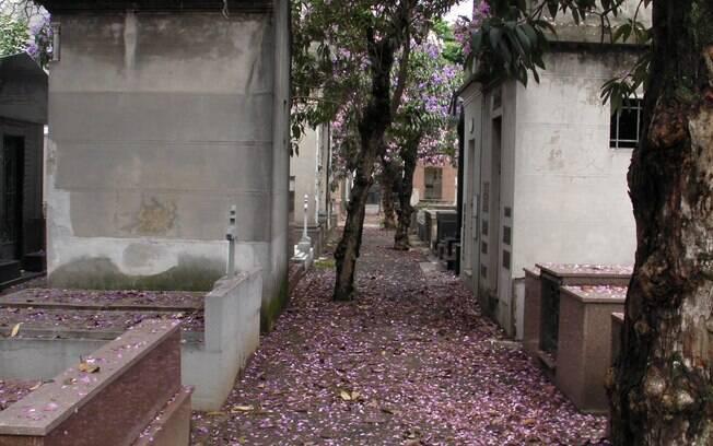 Uma das arborizadas alamedas do Araçá: ornamentos de tumbas estão desaparecendo do local